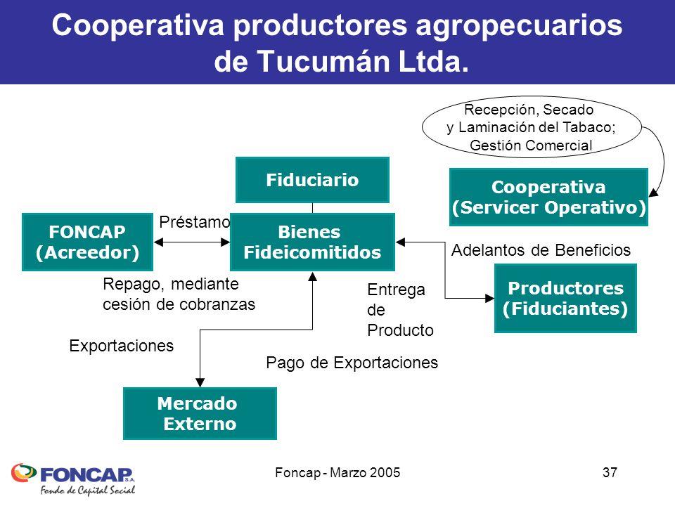 Foncap - Marzo 200537 Bienes Fideicomitidos Fiduciario Productores (Fiduciantes) FONCAP (Acreedor) Mercado Externo Pago de Exportaciones Adelantos de Beneficios Entrega de Producto Préstamo Repago, mediante cesión de cobranzas Cooperativa (Servicer Operativo) Recepción, Secado y Laminación del Tabaco; Gestión Comercial Exportaciones Cooperativa productores agropecuarios de Tucumán Ltda.