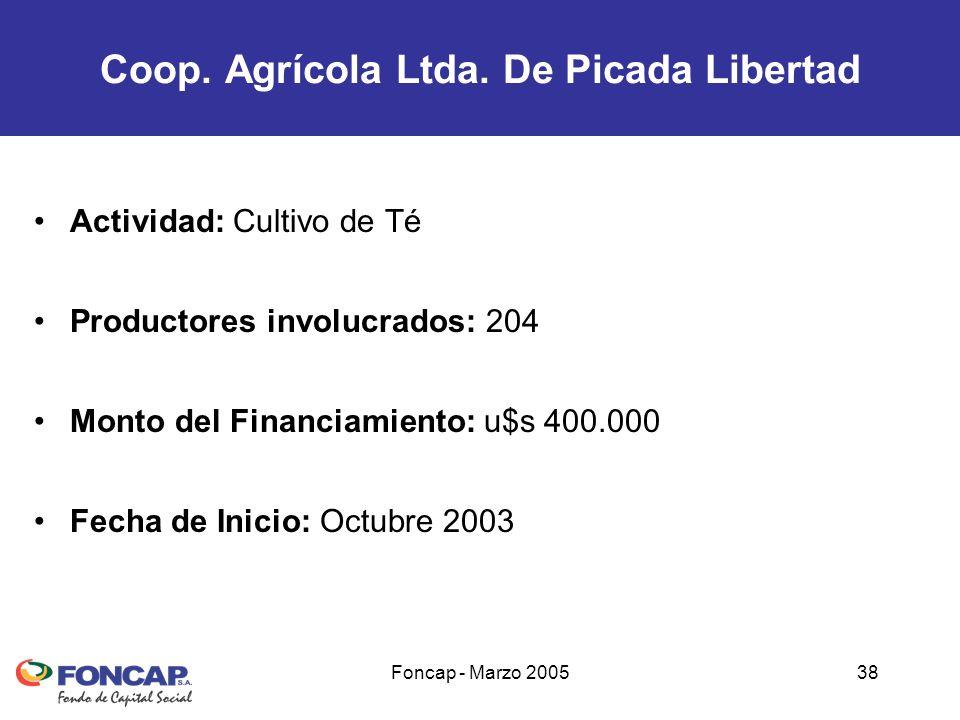 Foncap - Marzo 200538 Actividad: Cultivo de Té Productores involucrados: 204 Monto del Financiamiento: u$s 400.000 Fecha de Inicio: Octubre 2003 Coop.