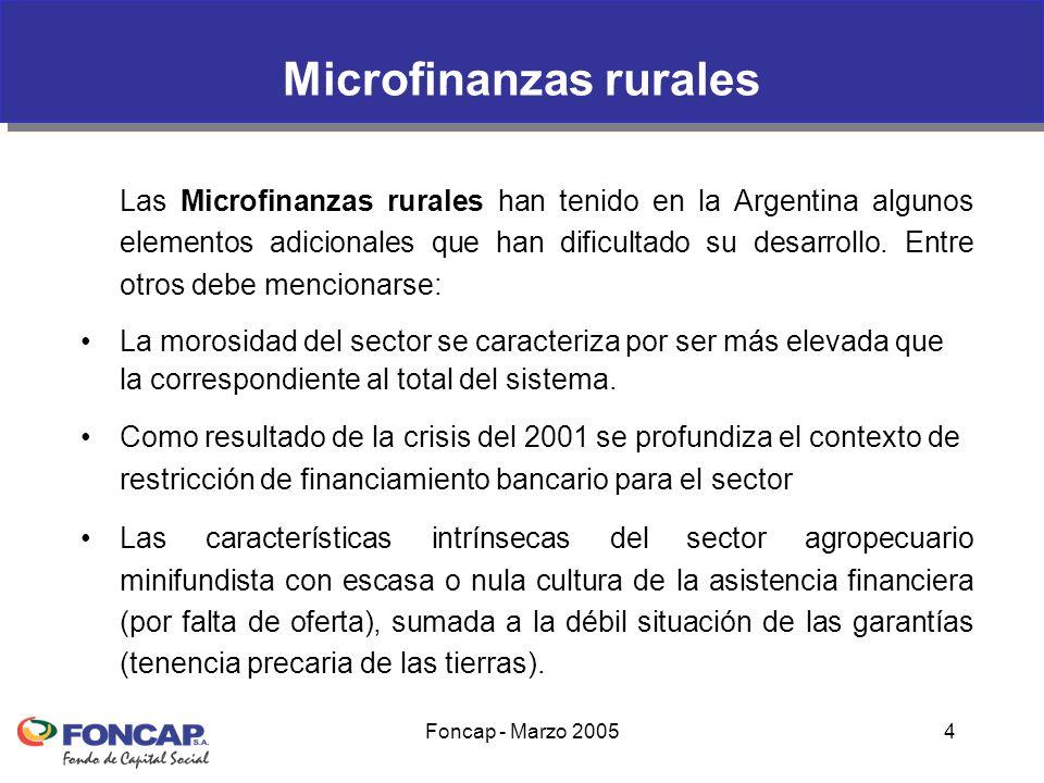 Foncap - Marzo 200525 Foncap – Estrategias de Atención sector rural El financiamiento al sector rural se canaliza a través de: –Financiamiento directo a pequeñas organizaciones que agrupan microproductores –Esquema de financiamiento específicos (Microfinanzas sectoriales).