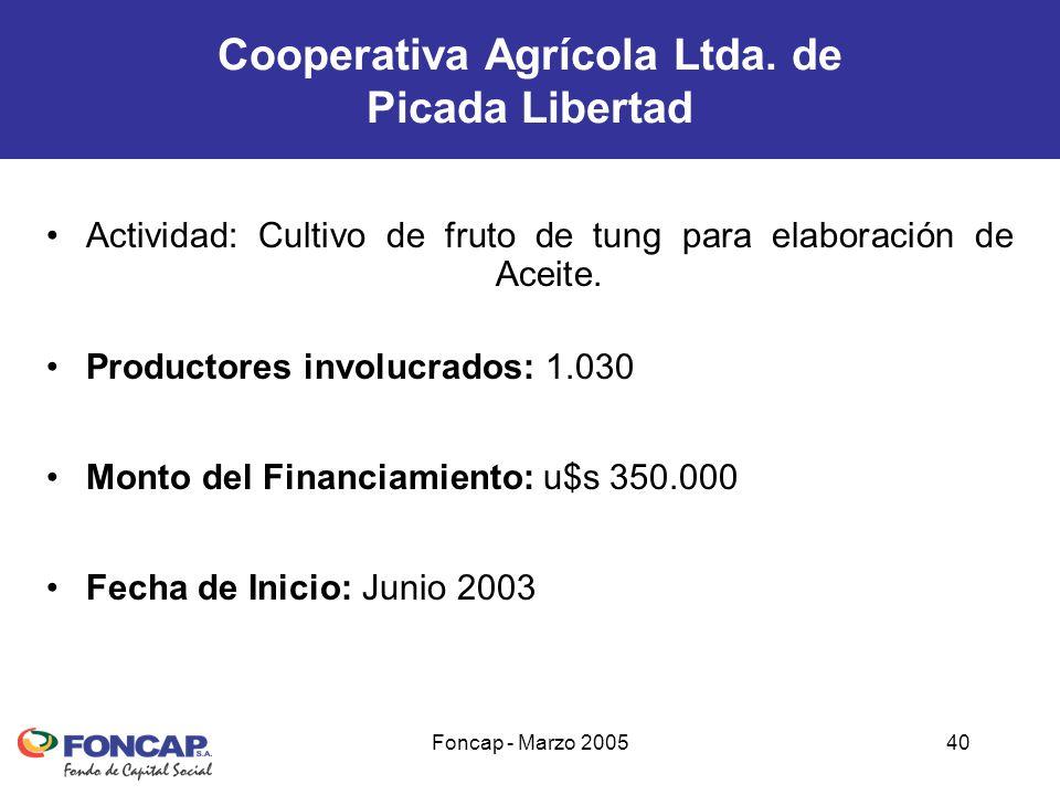 Foncap - Marzo 200540 Actividad: Cultivo de fruto de tung para elaboración de Aceite.