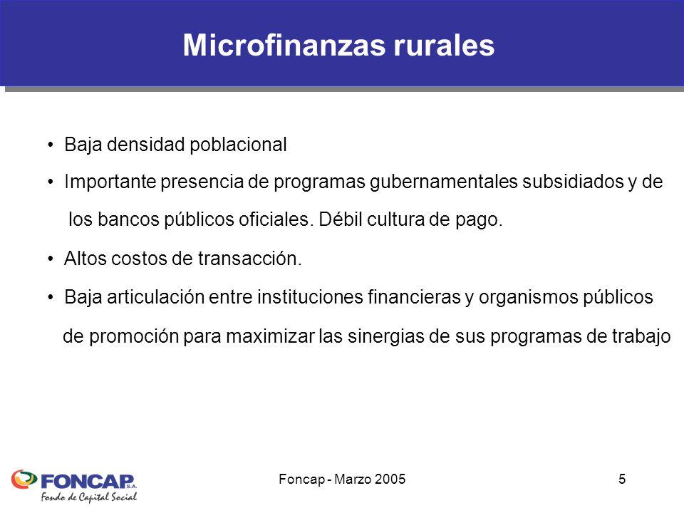 Foncap - Marzo 20055 Baja densidad poblacional Importante presencia de programas gubernamentales subsidiados y de los bancos públicos oficiales.