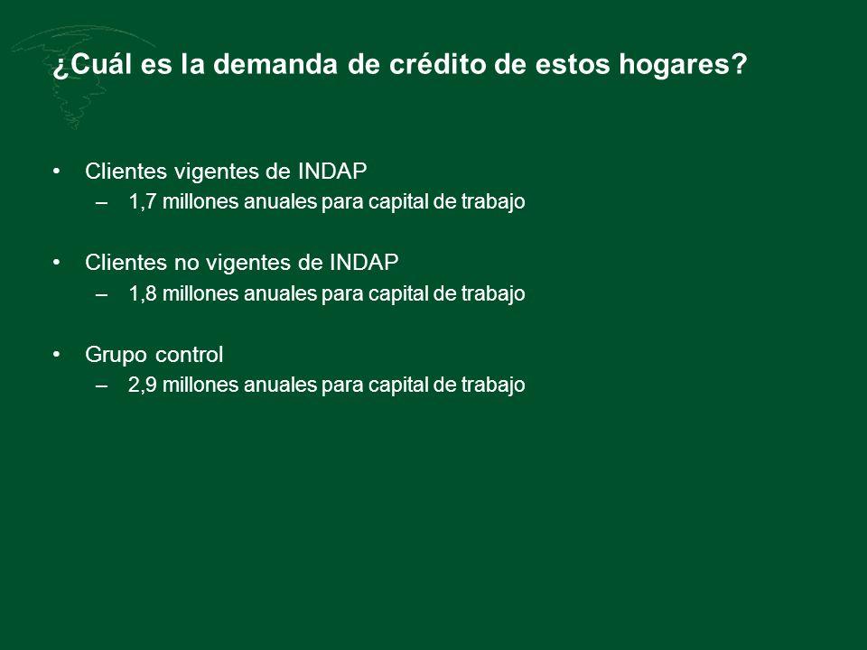 ¿Cuál es la demanda de crédito de estos hogares? Clientes vigentes de INDAP – 1,7 millones anuales para capital de trabajo Clientes no vigentes de IND