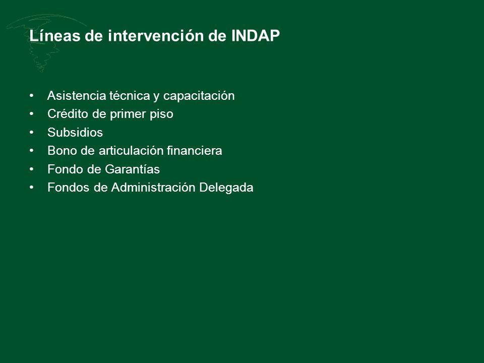 Líneas de intervención de INDAP Asistencia técnica y capacitación Crédito de primer piso Subsidios Bono de articulación financiera Fondo de Garantías Fondos de Administración Delegada