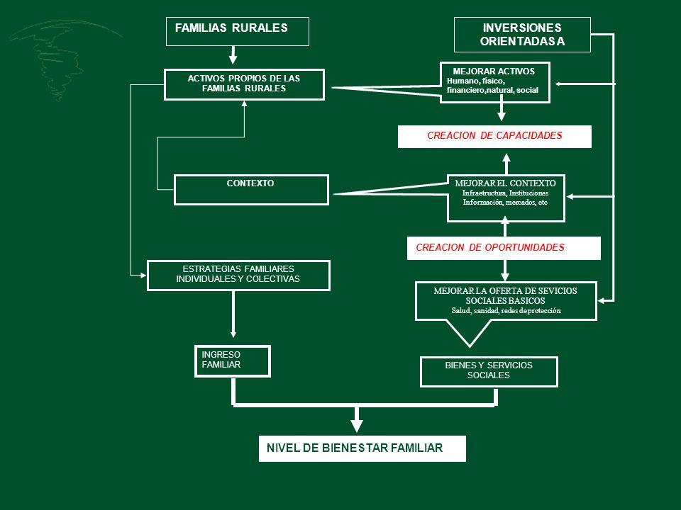 ACTIVOS PROPIOS DE LAS FAMILIAS RURALES CONTEXTO ESTRATEGIAS FAMILIARES INDIVIDUALES Y COLECTIVAS INGRESO FAMILIAR BIENES Y SERVICIOS SOCIALES NIVEL D