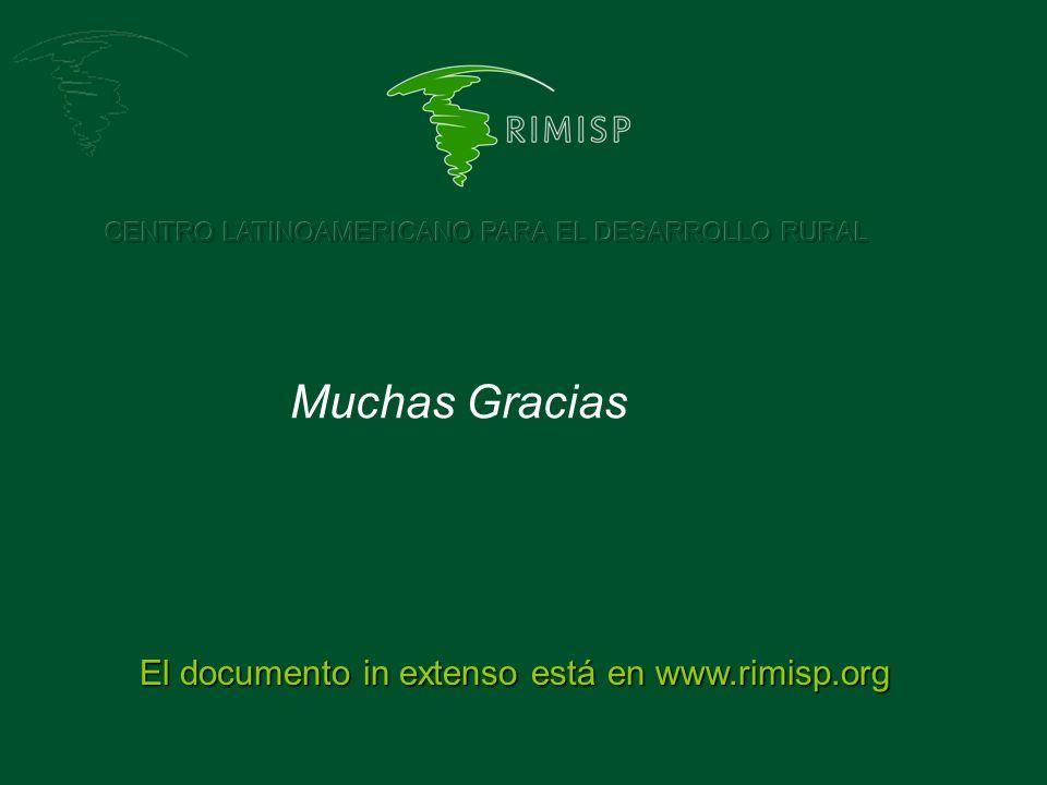 Muchas Gracias El documento in extenso está en www.rimisp.org