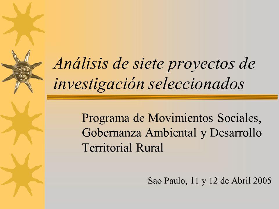 Análisis de siete proyectos de investigación seleccionados Programa de Movimientos Sociales, Gobernanza Ambiental y Desarrollo Territorial Rural Sao Paulo, 11 y 12 de Abril 2005