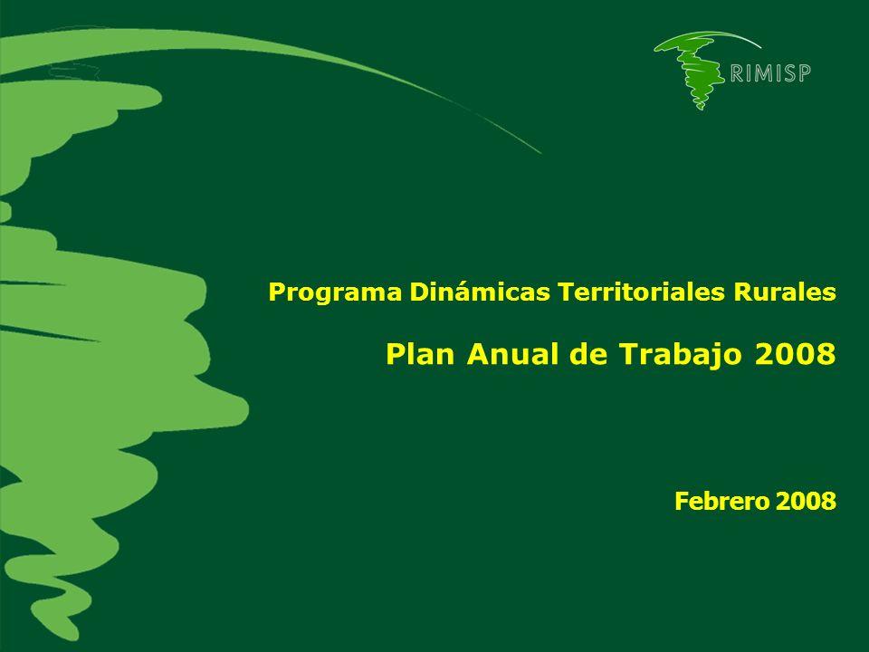 Programa Dinámicas Territoriales Rurales Plan Anual de Trabajo 2008 Febrero 2008