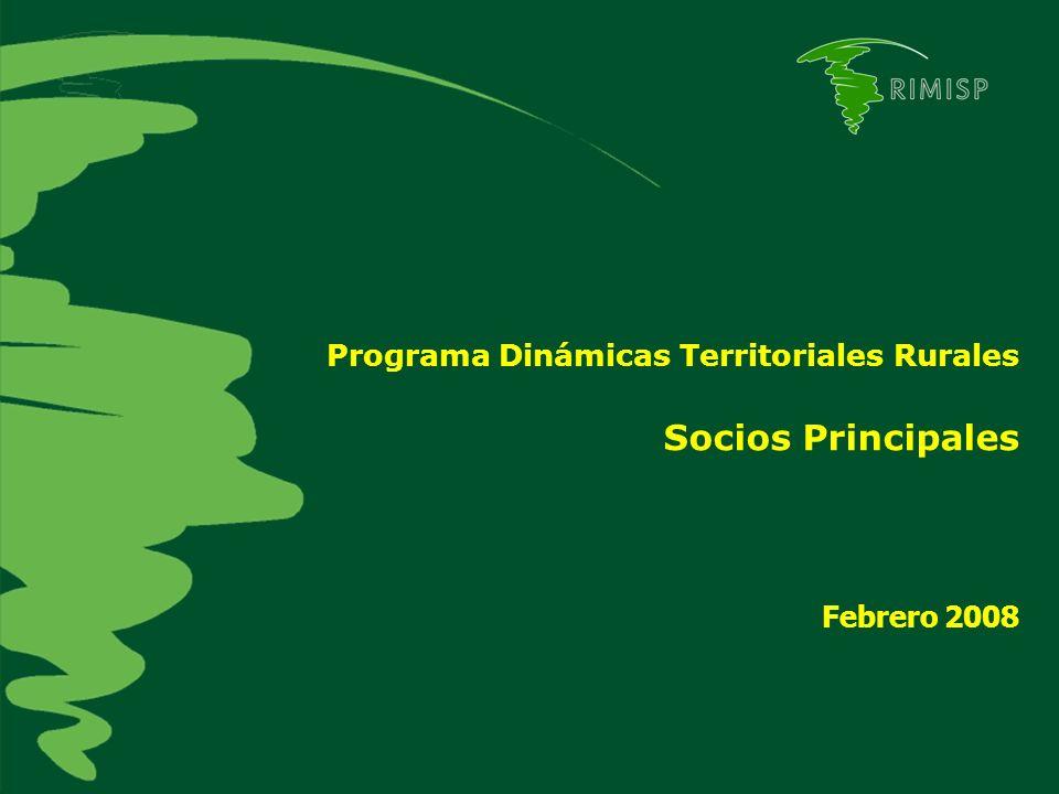 Programa Dinámicas Territoriales Rurales Socios Principales Febrero 2008