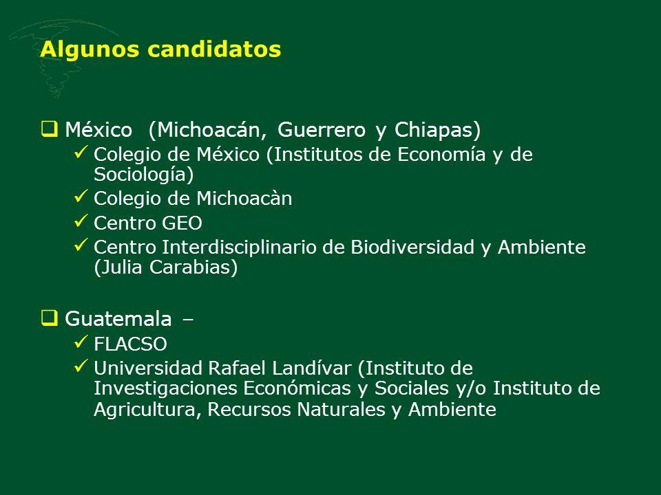 Algunos candidatos Nicaragua – Danish Institute for International Studies Instituto Nitlapán de la Universidad Centroamericana Honduras – Fundación PRISMA Red de Desarrollo Sostenible