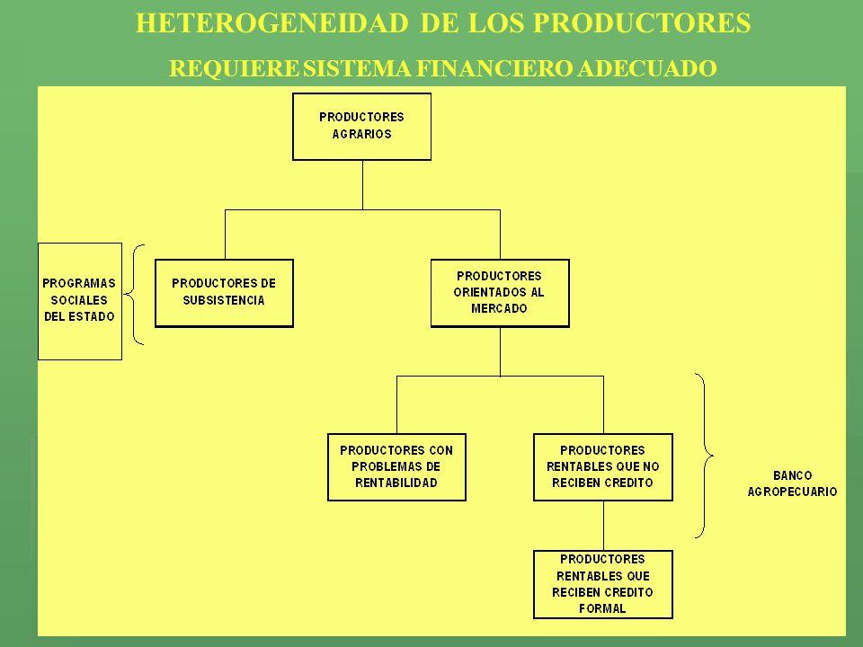 HETEROGENEIDAD DE LOS PRODUCTORES REQUIERE SISTEMA FINANCIERO ADECUADO