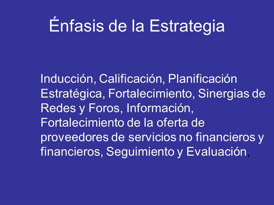 Énfasis de la Estrategia Inducción, Calificación, Planificación Estratégica, Fortalecimiento, Sinergias de Redes y Foros, Información, Fortalecimiento