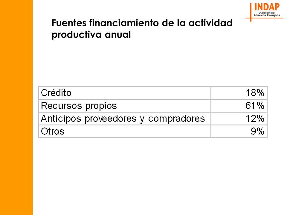 Fuentes financiamiento de la actividad productiva anual