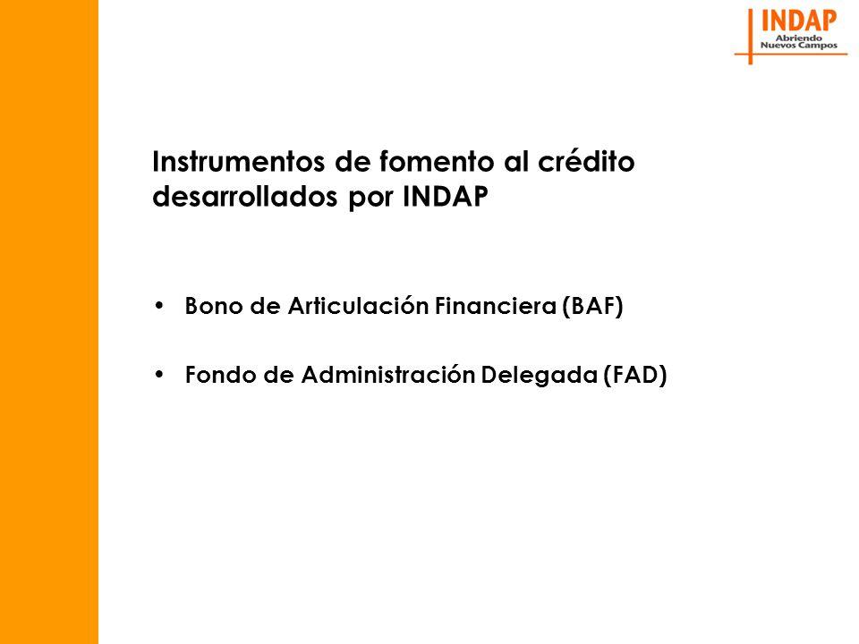 Instrumentos de fomento al crédito desarrollados por INDAP Bono de Articulación Financiera (BAF) Fondo de Administración Delegada (FAD)