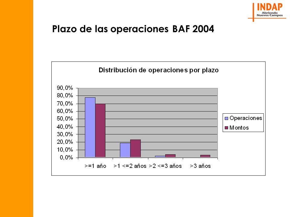 Plazo de las operaciones BAF 2004