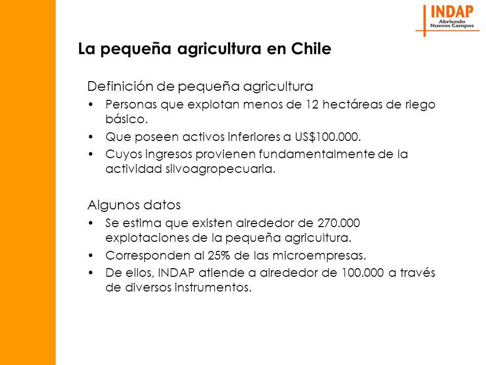 La pequeña agricultura en Chile Definición de pequeña agricultura Personas que explotan menos de 12 hectáreas de riego básico.