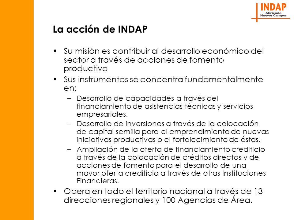 La acción de INDAP Su misión es contribuir al desarrollo económico del sector a través de acciones de fomento productivo Sus instrumentos se concentra fundamentalmente en: –Desarrollo de capacidades a través del financiamiento de asistencias técnicas y servicios empresariales.