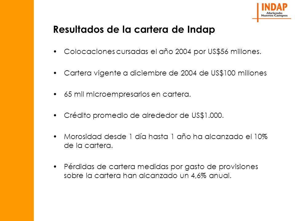 Resultados de la cartera de Indap Las cifras anteriores representan una mejoría notable sobre años anteriores y representan un standard aceptable para una institución financiera que opera en microfinanzas.