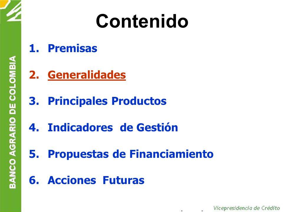 Factores externos de éxito Contando con una fuente estable de recursos para el sector, tal como Finagro creada en 1991.