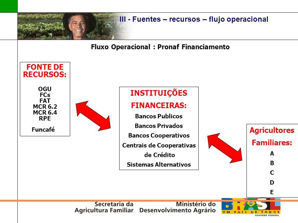 III - Fuentes – recursos – flujo operacional FONTE DE RECURSOS: OGU FCs FAT MCR 6.2 MCR 6.4 RPE Funcafé Fluxo Operacional : Pronaf Financiamento Agric