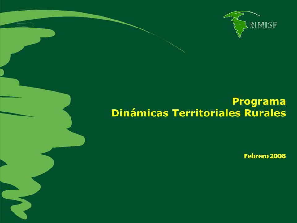 Programa Dinámicas Territoriales Rurales Febrero 2008