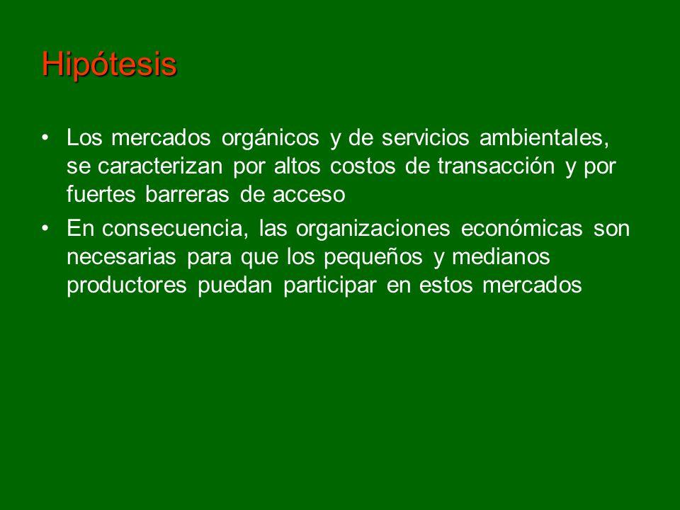 Hipótesis Los mercados orgánicos y de servicios ambientales, se caracterizan por altos costos de transacción y por fuertes barreras de acceso En conse