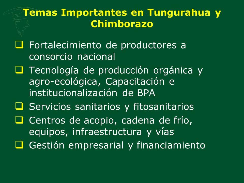 Temas Importantes en Tungurahua y Chimborazo Fortalecimiento de productores a consorcio nacional Tecnología de producción orgánica y agro-ecológica, Capacitación e institucionalización de BPA Servicios sanitarios y fitosanitarios Centros de acopio, cadena de frío, equipos, infraestructura y vías Gestión empresarial y financiamiento