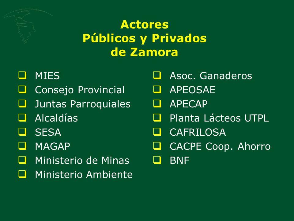 Actores Públicos y Privados de Zamora MIES Consejo Provincial Juntas Parroquiales Alcaldías SESA MAGAP Ministerio de Minas Ministerio Ambiente Asoc.
