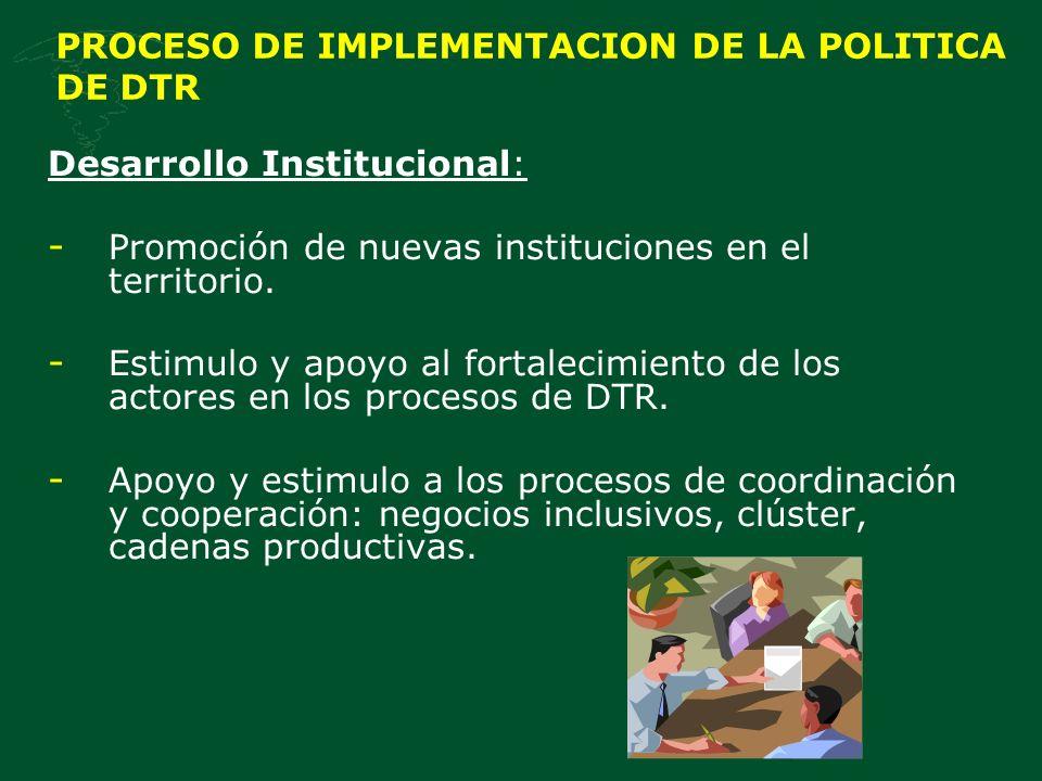 PROCESO DE IMPLEMENTACION DE LA POLITICA DE DTR Desarrollo Institucional: - Promoción de nuevas instituciones en el territorio.