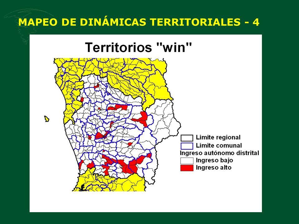 MAPEO DE DINÁMICAS TERRITORIALES - 4