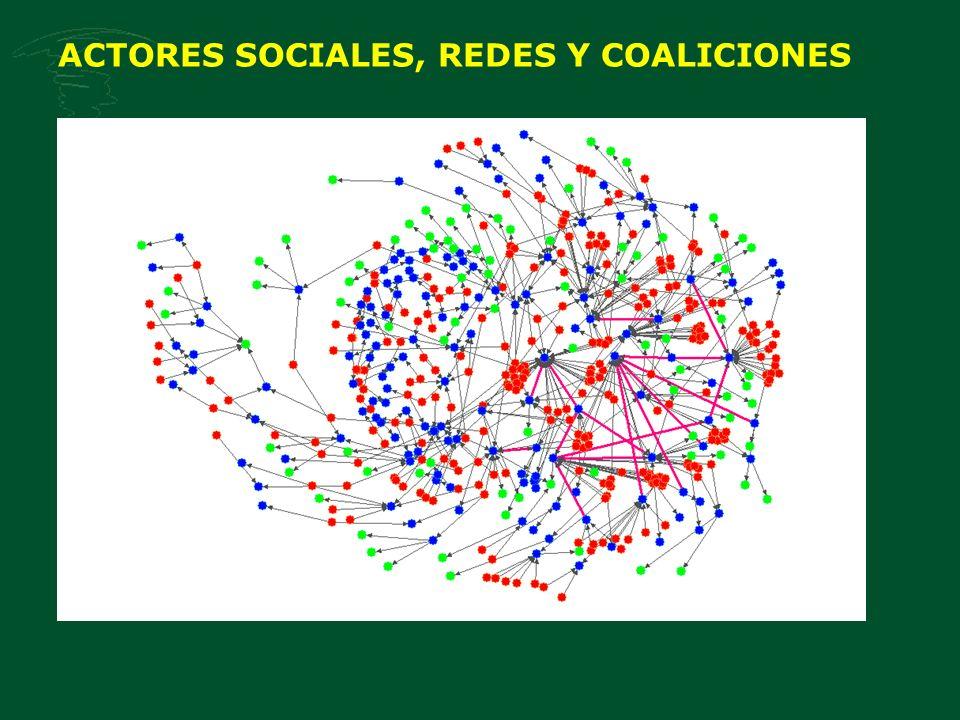 ACTORES SOCIALES, REDES Y COALICIONES
