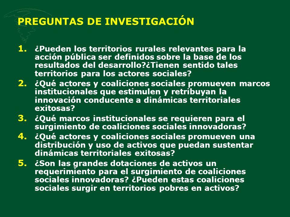 PREGUNTAS DE INVESTIGACIÓN 1. ¿Pueden los territorios rurales relevantes para la acción pública ser definidos sobre la base de los resultados del desa