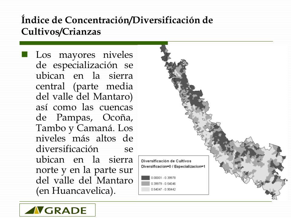 Índice de Concentración/Diversificación de Cultivos/Crianzas Los mayores niveles de especialización se ubican en la sierra central (parte media del valle del Mantaro) así como las cuencas de Pampas, Ocoña, Tambo y Camaná.