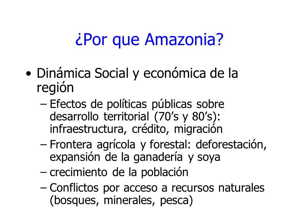 ¿Por que Amazonia? Dinámica Social y económica de la región –Efectos de políticas públicas sobre desarrollo territorial (70s y 80s): infraestructura,