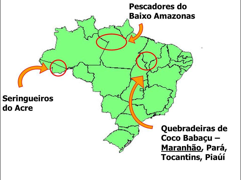 Seringueiros do Acre Pescadores do Baixo Amazonas Quebradeiras de Coco Babaçu – Maranhão, Pará, Tocantins, Piaúí
