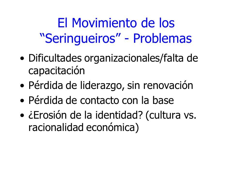 El Movimiento de los Seringueiros - Problemas Dificultades organizacionales/falta de capacitación Pérdida de liderazgo, sin renovación Pérdida de cont
