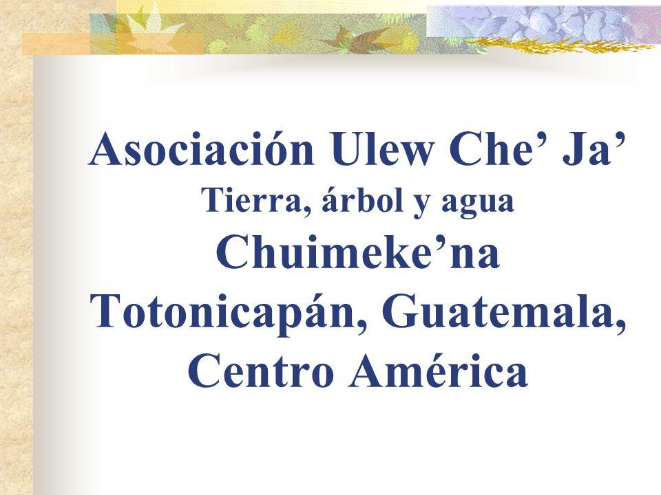 Asociación Ulew Che Ja Tierra, árbol y agua Chuimekena Totonicapán, Guatemala, Centro América