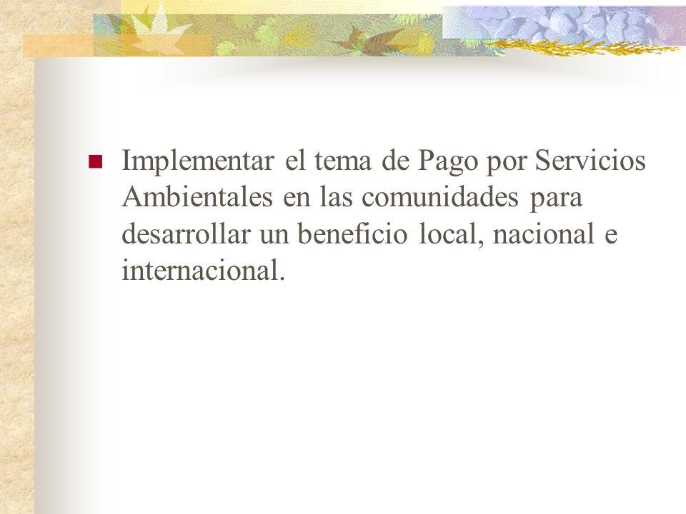 Implementar el tema de Pago por Servicios Ambientales en las comunidades para desarrollar un beneficio local, nacional e internacional.