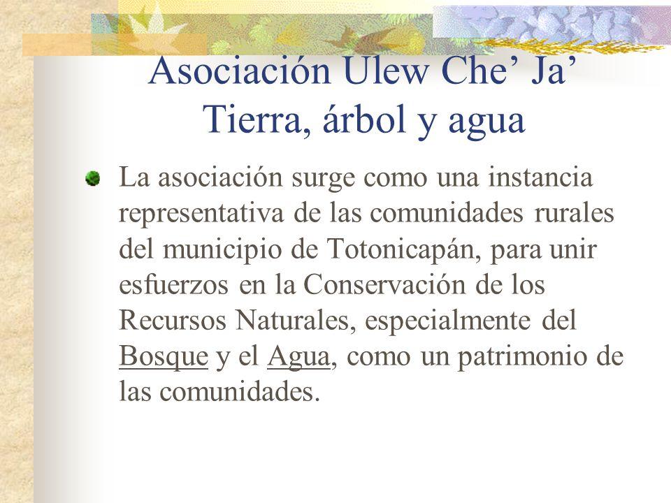 Asociación Ulew Che Ja Tierra, árbol y agua La asociación surge como una instancia representativa de las comunidades rurales del municipio de Totonica