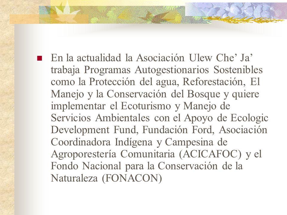En la actualidad la Asociación Ulew Che Ja trabaja Programas Autogestionarios Sostenibles como la Protección del agua, Reforestación, El Manejo y la C