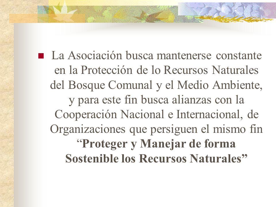 La Asociación busca mantenerse constante en la Protección de lo Recursos Naturales del Bosque Comunal y el Medio Ambiente, y para este fin busca alian