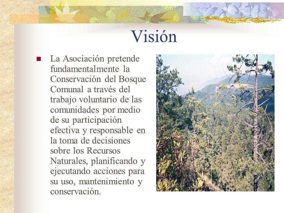 Visión La Asociación pretende fundamentalmente la Conservación del Bosque Comunal a través del trabajo voluntario de las comunidades por medio de su p