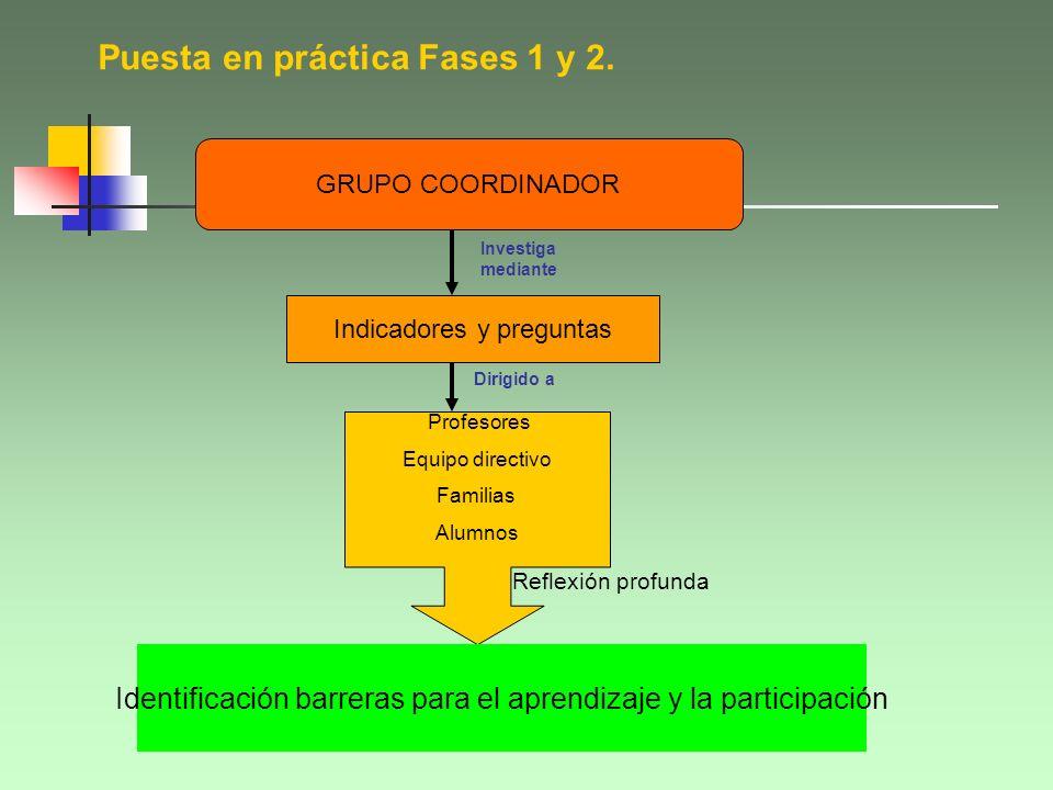 Dimensiones Crear CULTURAS inclusivas Elaborar POLÍTICAS inclusivas Desarrollar PRÁCTICAS inclusivas