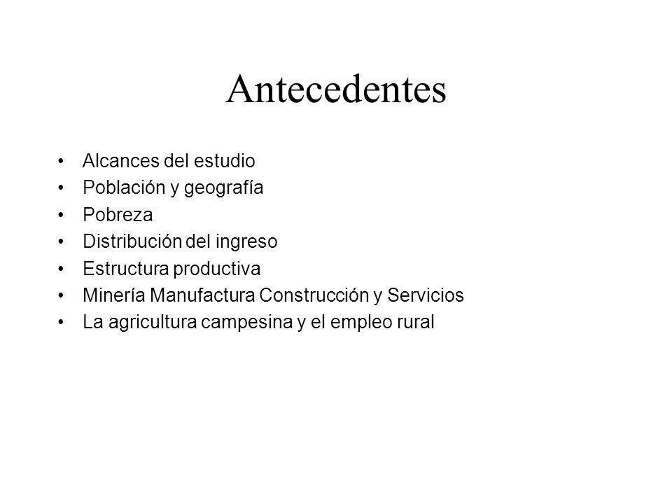 Antecedentes Alcances del estudio Población y geografía Pobreza Distribución del ingreso Estructura productiva Minería Manufactura Construcción y Serv