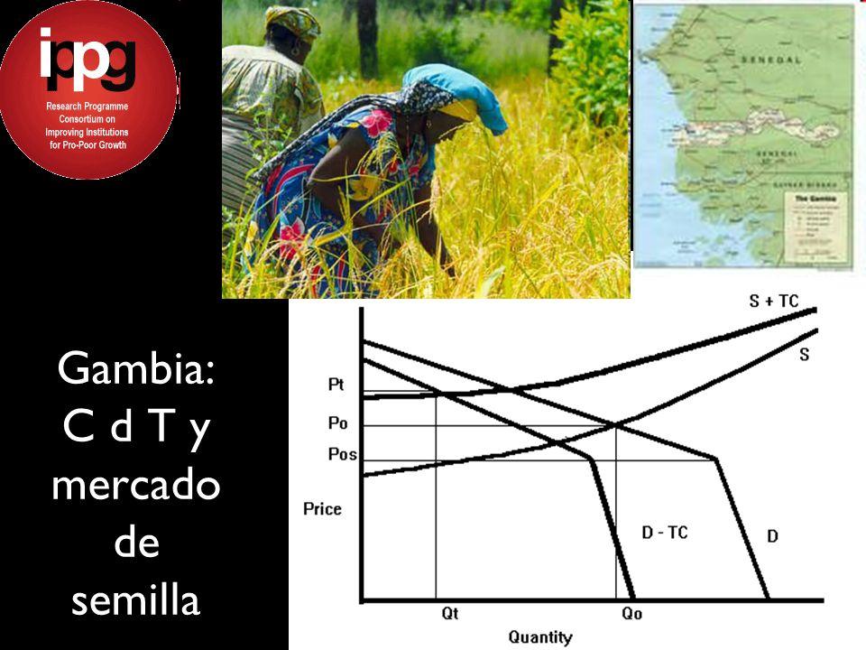 Gambia: C d T y mercado de semilla