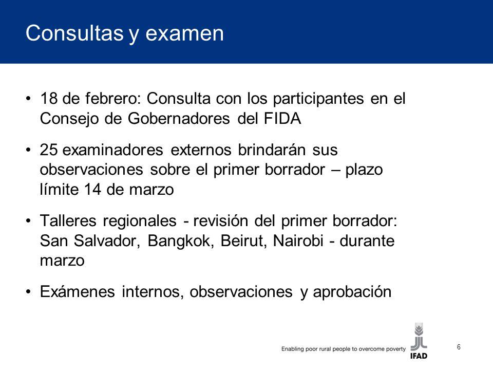 6 Consultas y examen 18 de febrero: Consulta con los participantes en el Consejo de Gobernadores del FIDA 25 examinadores externos brindarán sus obser