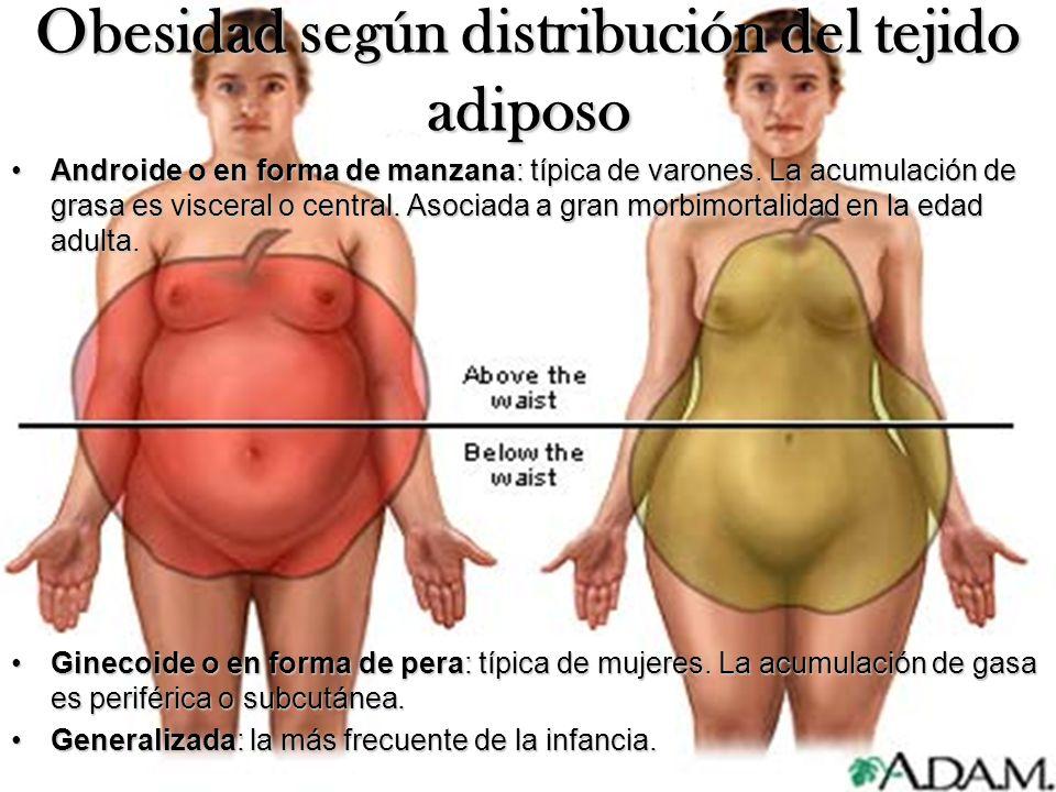 Obesidad según distribución del tejido adiposo Androide o en forma de manzana: típica de varones. La acumulación de grasa es visceral o central. Asoci