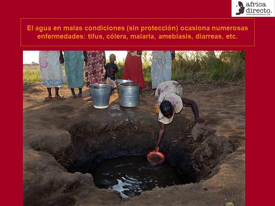 El agua en malas condiciones (sin protección) ocasiona numerosas enfermedades: tifus, cólera, malaria, amebiasis, diarreas, etc.
