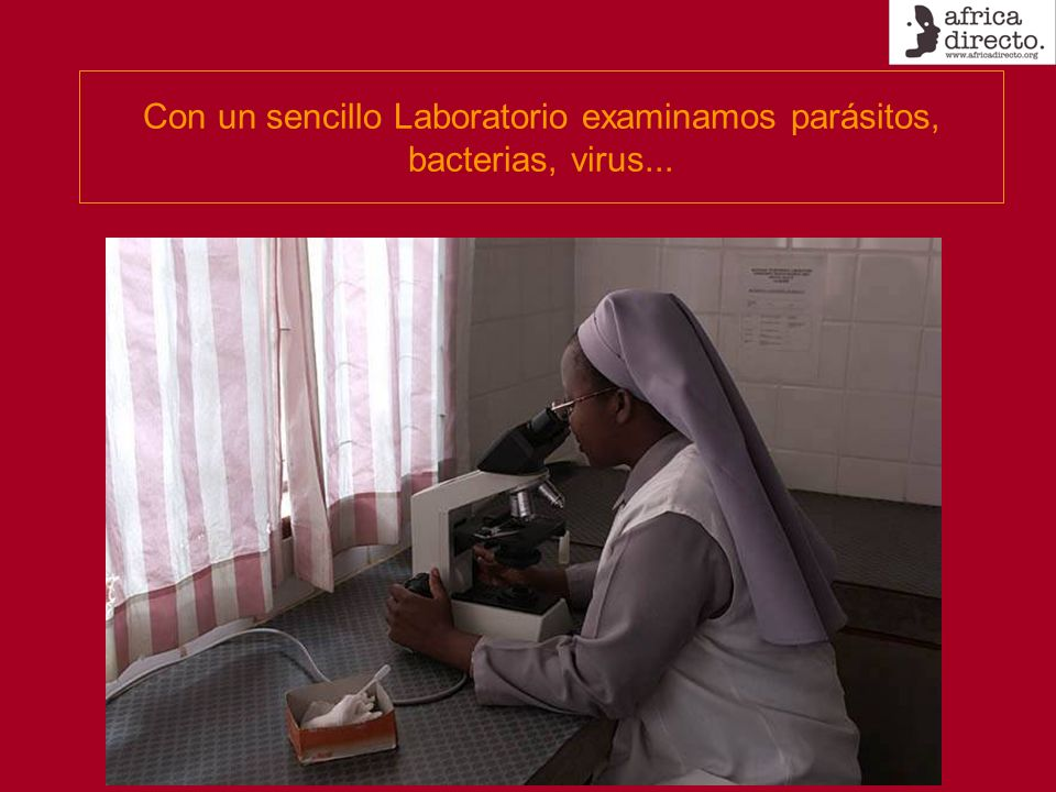 Con un sencillo Laboratorio examinamos parásitos, bacterias, virus...