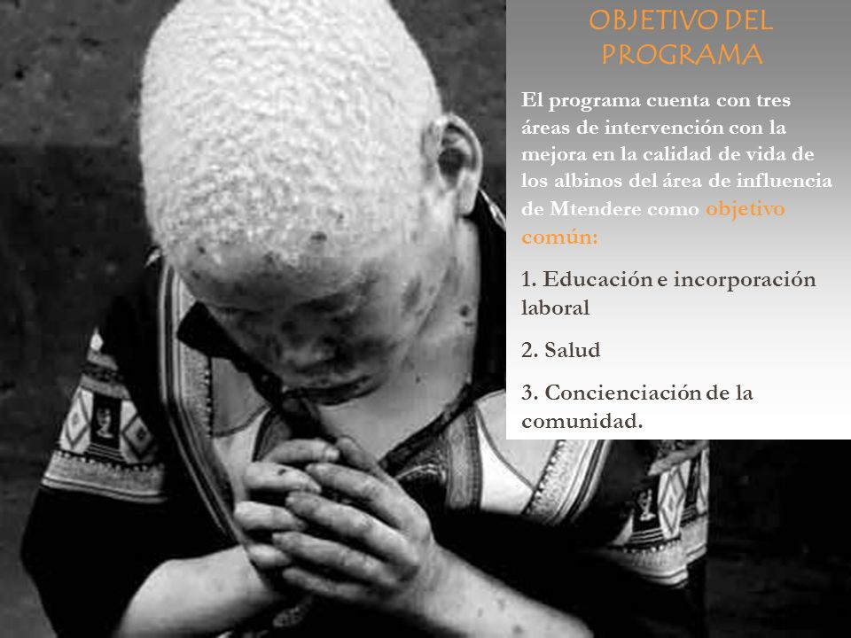 OBJETIVO DEL PROGRAMA El programa cuenta con tres áreas de intervención con la mejora en la calidad de vida de los albinos del área de influencia de M