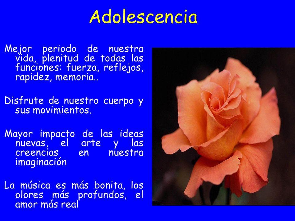 Adolescencia Mejor periodo de nuestra vida, plenitud de todas las funciones: fuerza, reflejos, rapidez, memoria.. Disfrute de nuestro cuerpo y sus mov